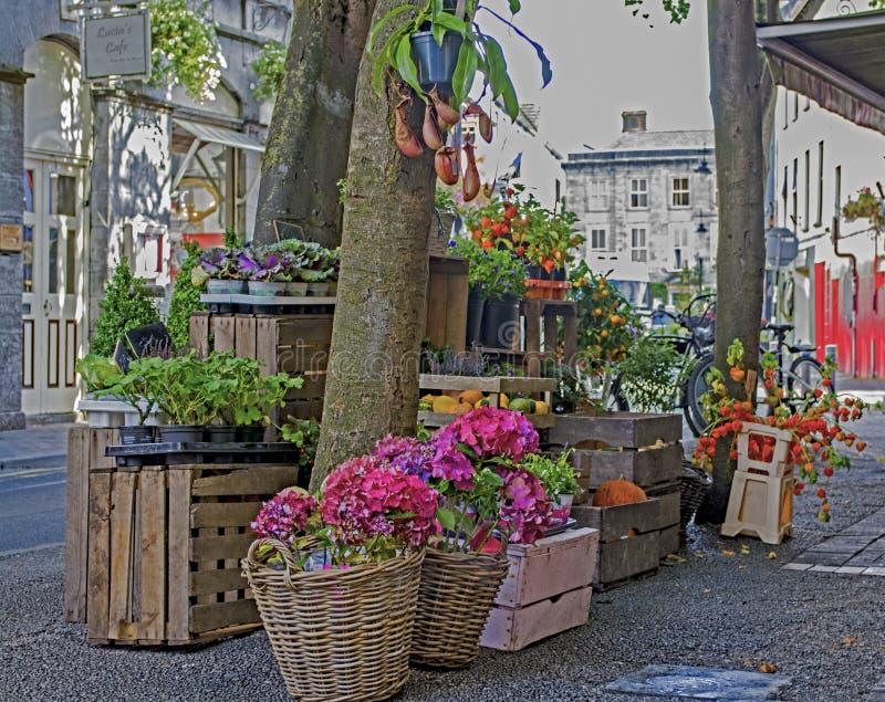 Straatscène Galway royalty-vrije stock afbeeldingen