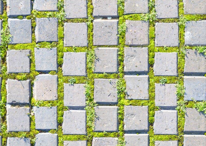 Straatsteenstijl met gras naadloos patroon stock foto's