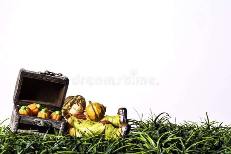 Strach na wróble i banie na Zielonej trawie zdjęcie stock
