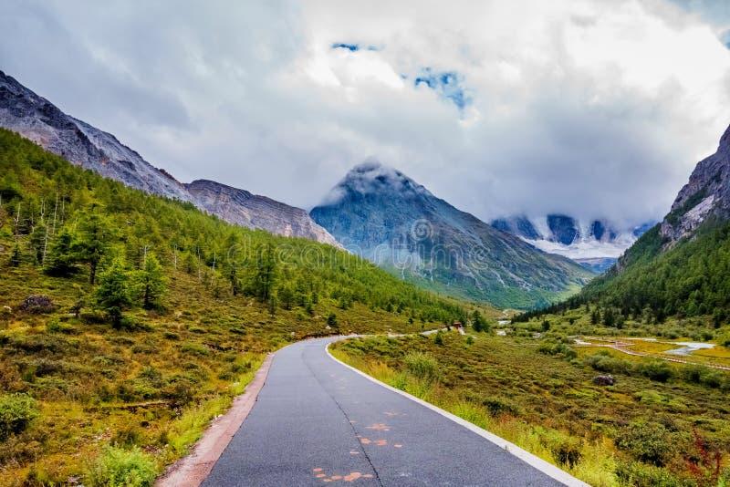 Strada alla montagna della neve con l'abetaia fotografia stock libera da diritti