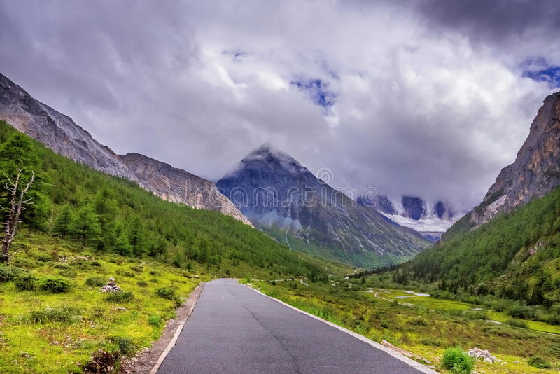 Strada alla montagna della neve con l'abetaia fotografie stock