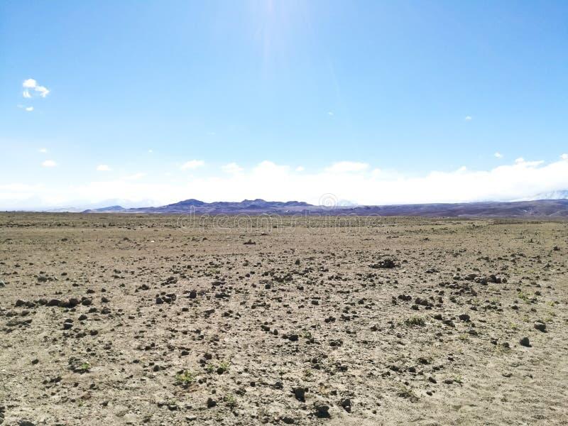 Strada alla riserva naturale del fenicottero, Cile fotografie stock libere da diritti