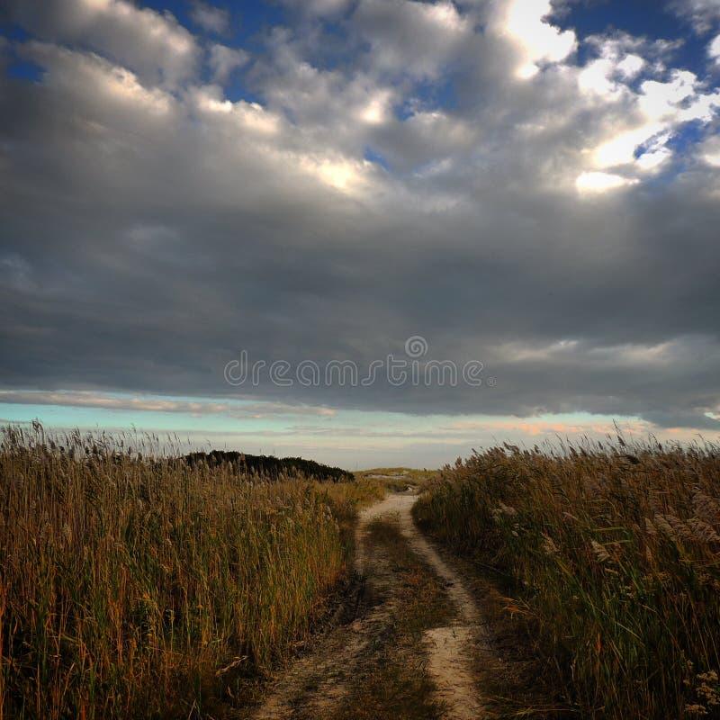 Strada alla spiaggia fotografie stock libere da diritti