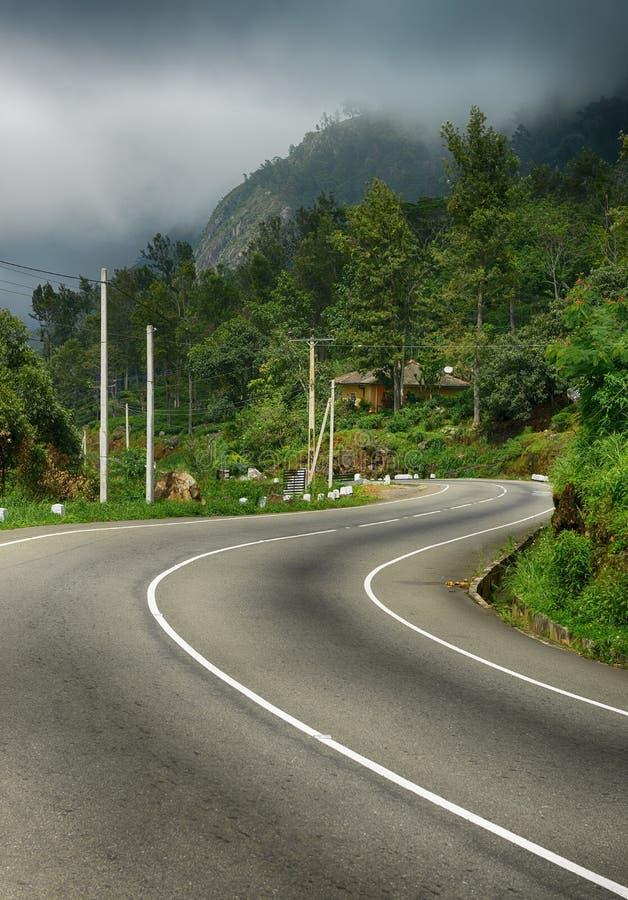 Strada alle montagne. Nebbia sopra la foresta immagine stock libera da diritti
