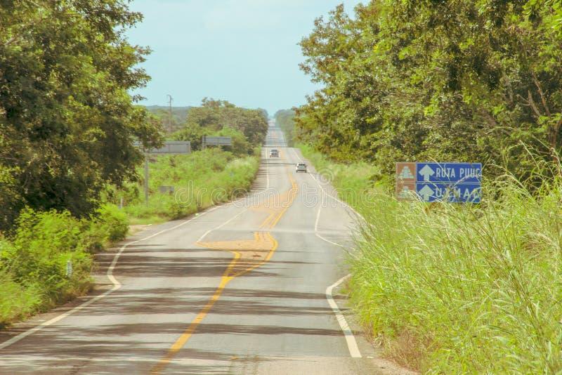 Strada alle rovine della città antica di Uxmal fotografia stock libera da diritti