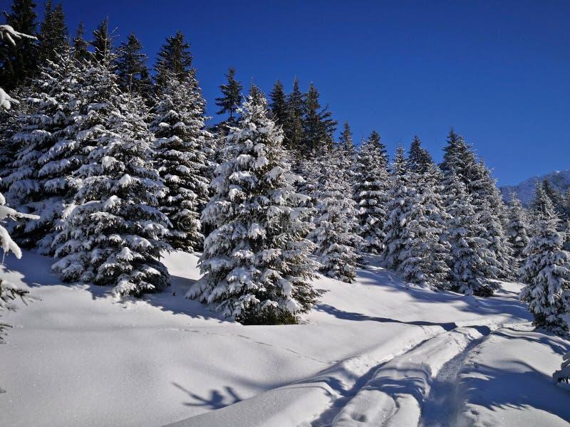 Strada alpina coperta di neve fotografie stock