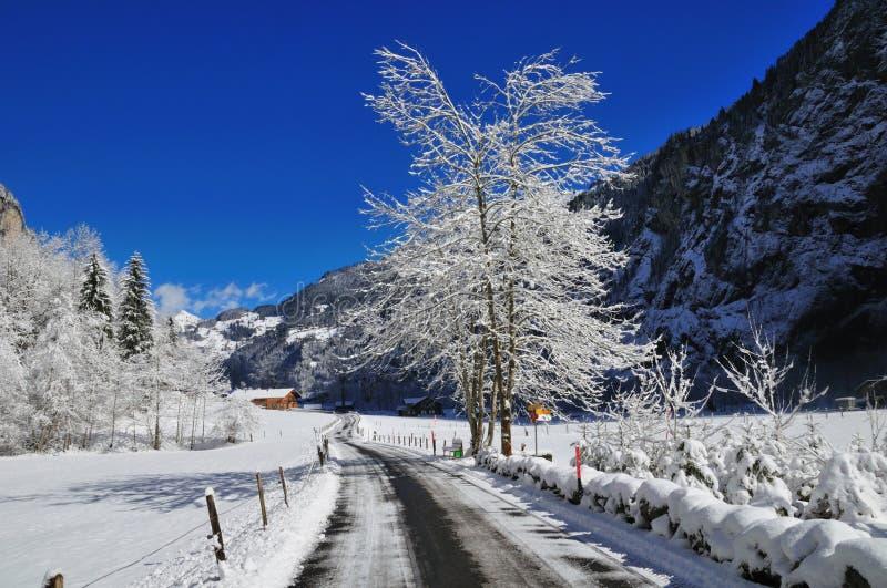 Download Strada alpina dello Snowy fotografia stock. Immagine di alpino - 7320440