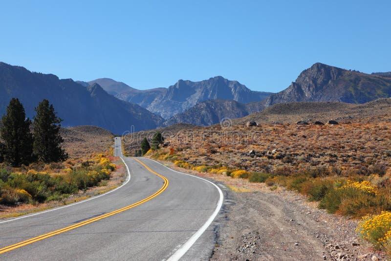 Strada americana attraverso il deserto fotografia stock libera da diritti