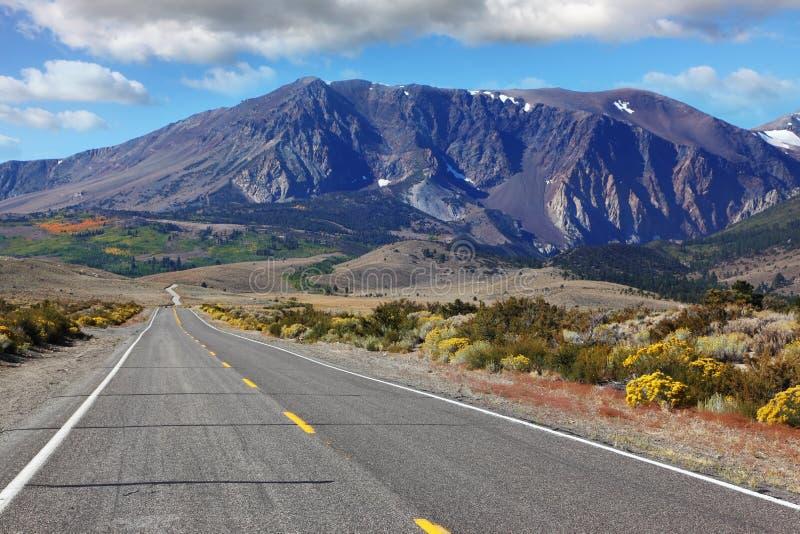 Strada americana attraverso il deserto scenico fotografia stock