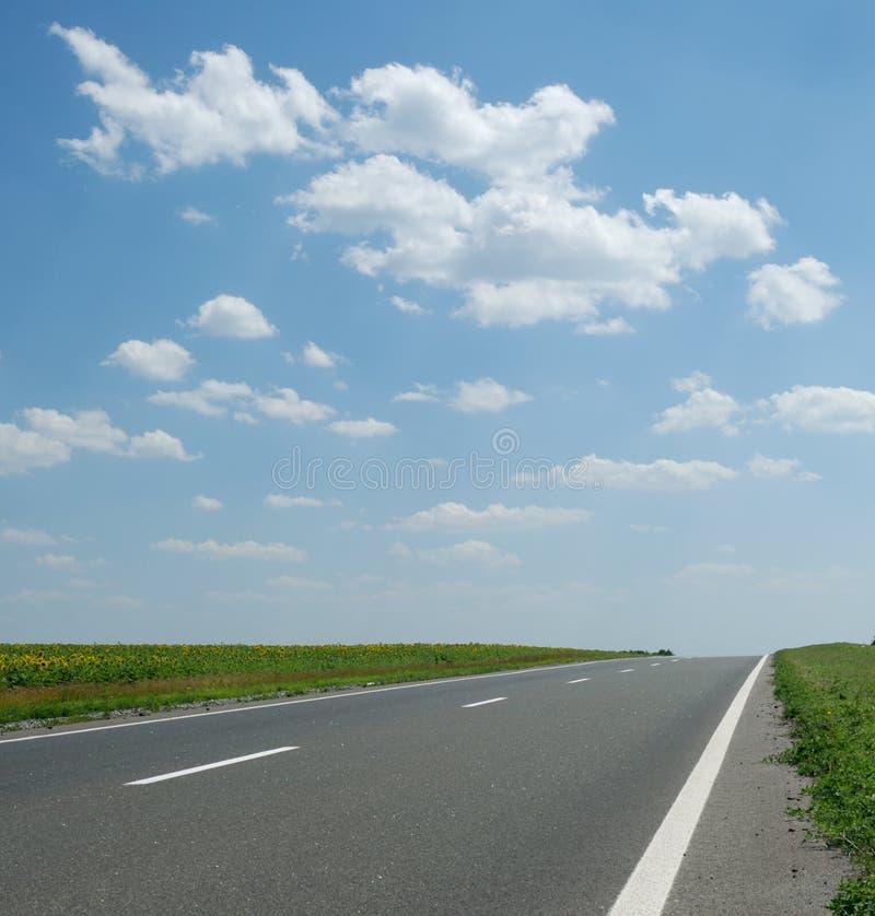 Strada asfaltata fotografie stock