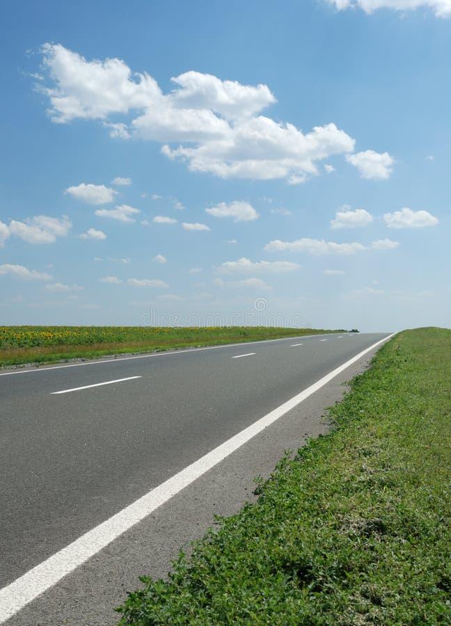 Strada asfaltata immagine stock