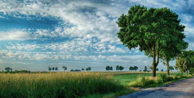 Strada asfaltata, campi e cielo 2 fotografia stock libera da diritti