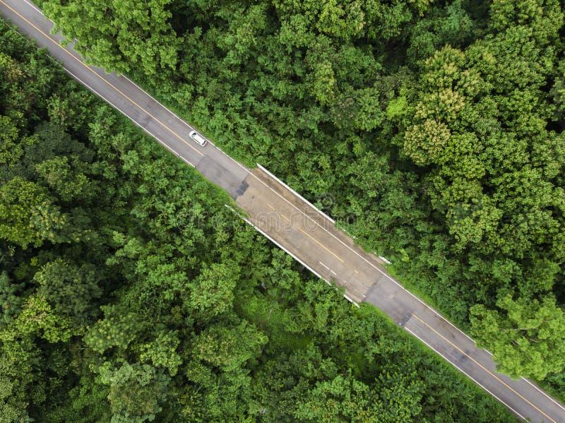 Strada asfaltata con la foresta tropicale verde alla campagna della Tailandia fotografia stock libera da diritti