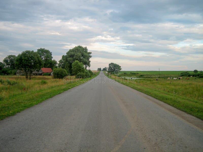 Strada asfaltata diretta attraverso la campagna sotto il cielo, su cui le nuvole galleggiano fotografie stock