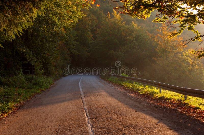 Strada asfaltata vuota della montagna Bella scena di autunno immagine stock