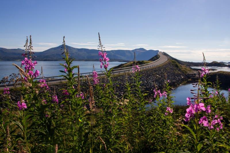 Strada atlantica vicino a Molde in Norvegia del sud immagine stock
