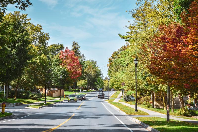 Strada attraverso gli alberi con colori autunnali in una giornata di sole autunno Gananoque, Canada immagine stock libera da diritti