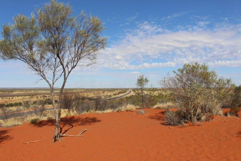 Strada attraverso il deserto fotografia stock libera da diritti