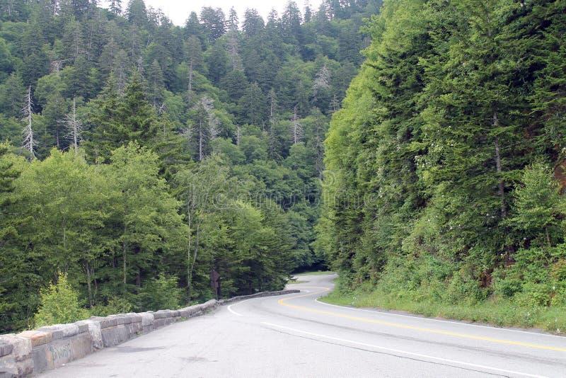 Strada attraverso il parco nazionale di Great Smoky Mountains fotografia stock