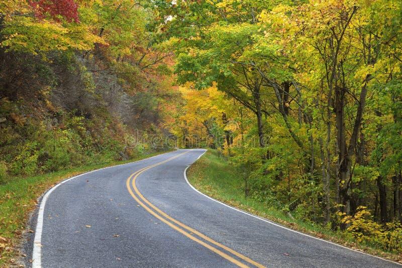 Download Strada in autunno immagine stock. Immagine di bello, azionamento - 30827541