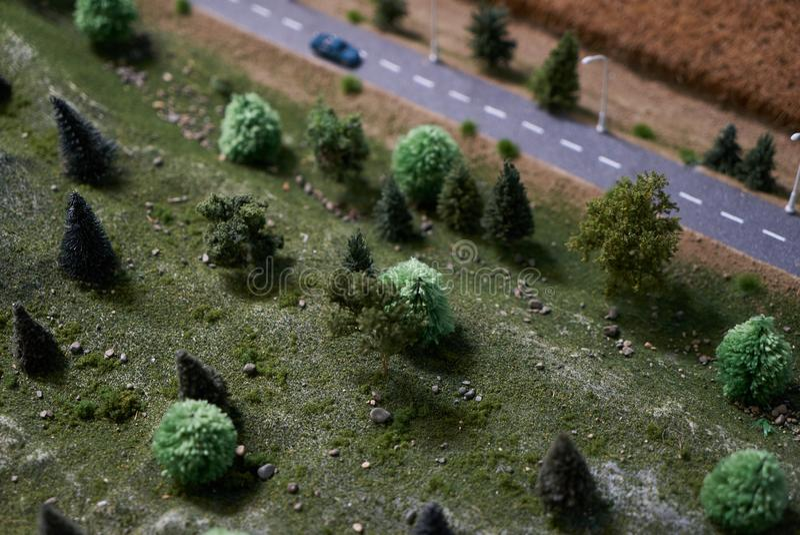 Strada campestre con gli alberi verdi, l'automobile ed il campo asciutto del raccolto del grano Comcept di agricoltura fotografie stock