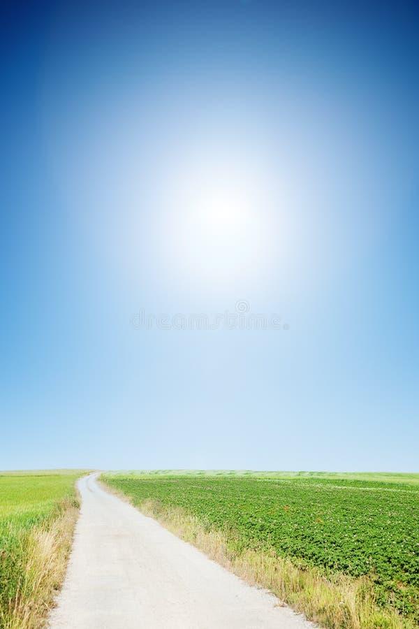 Strada campestre con il cielo pieno di sole cloudless immagini stock libere da diritti