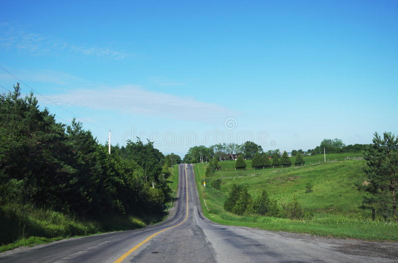 Strada campestre di aperta campagna allineata dagli alberi e dalla pianta immagine stock libera da diritti