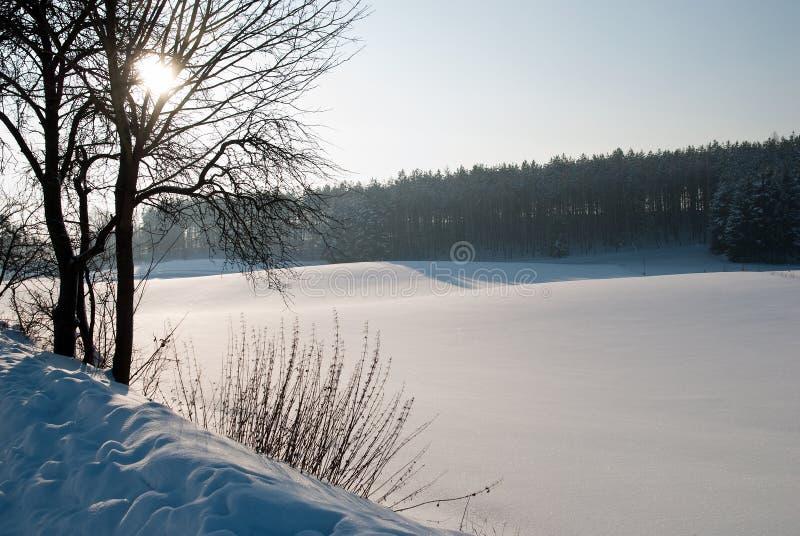 Strada campestre di Snowy fotografia stock libera da diritti