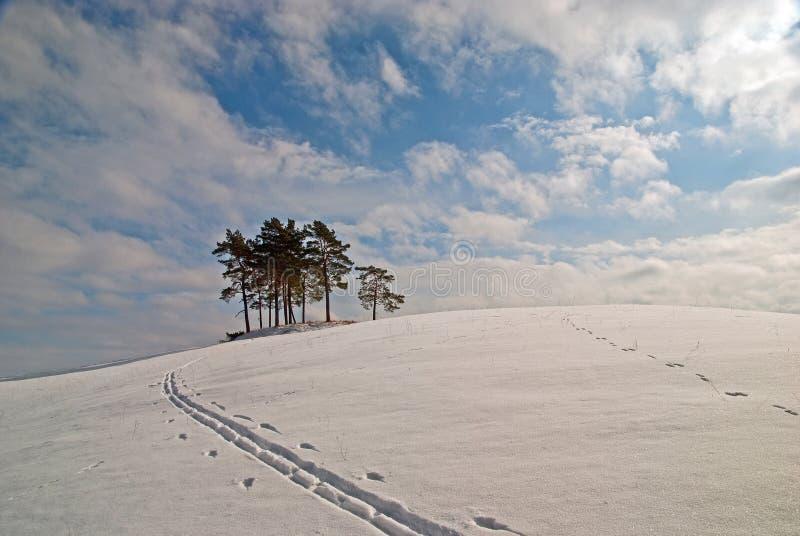 Strada campestre di Snowy immagini stock