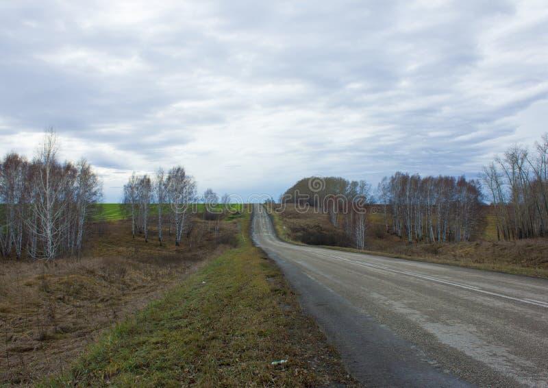 Strada campestre fra i campi fotografia stock