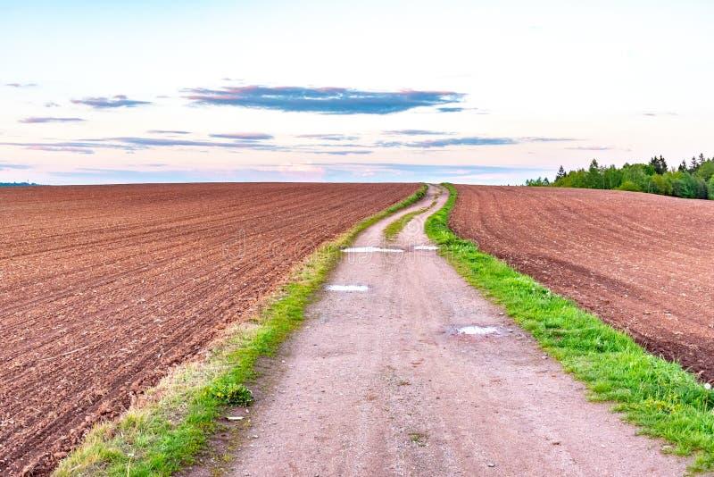 Strada campestre nel paesaggio agricolo rurale Campi rossi del suolo intorno a Nova Paka, repubblica Ceca immagine stock