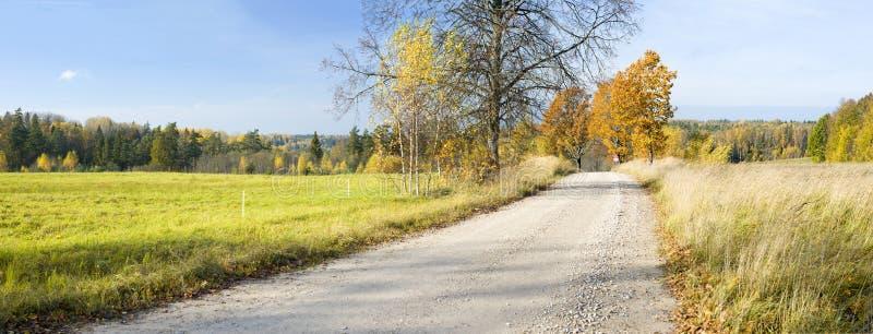 Strada campestre nel parco nazionale di Gaujas, Lettonia fotografie stock
