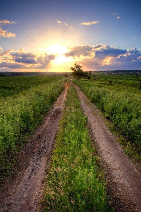 Strada campestre nell'ambito del tramonto fotografia stock libera da diritti