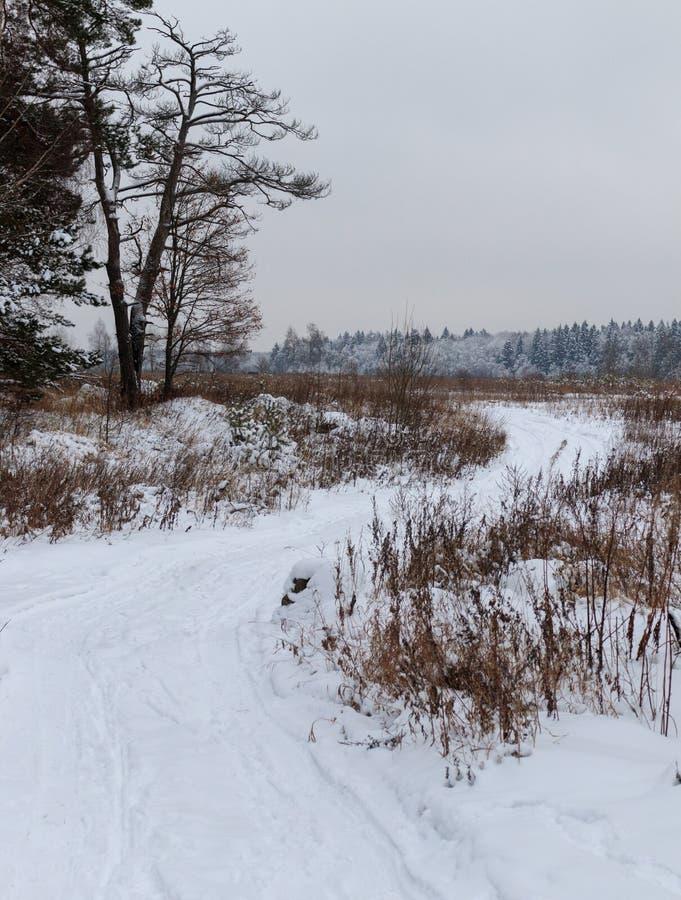Strada campestre nell'inverno immagine stock libera da diritti
