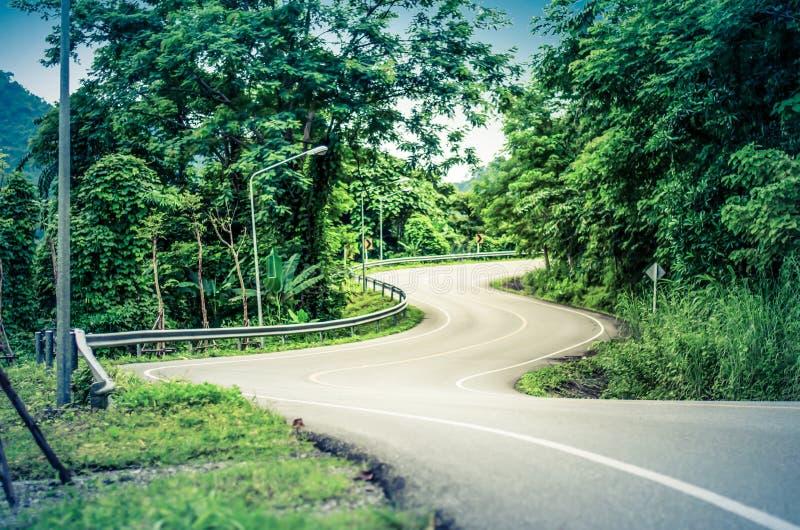 Strada curva serpente immagine stock libera da diritti
