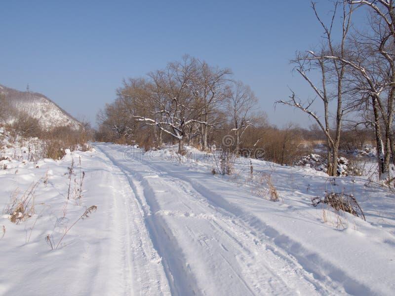 Strada del campo nell'inverno fotografia stock