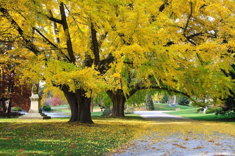 Strada del cimitero in autunno fotografia stock