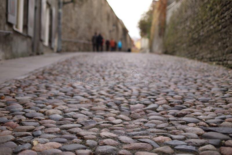 Strada del ciottolo a vecchia Tallinn fotografia stock libera da diritti