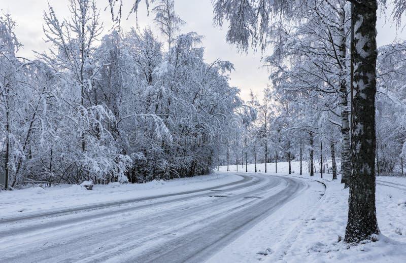 Strada del motore di Snowy fotografia stock libera da diritti