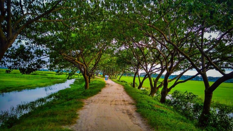 Strada del villaggio immagini stock libere da diritti