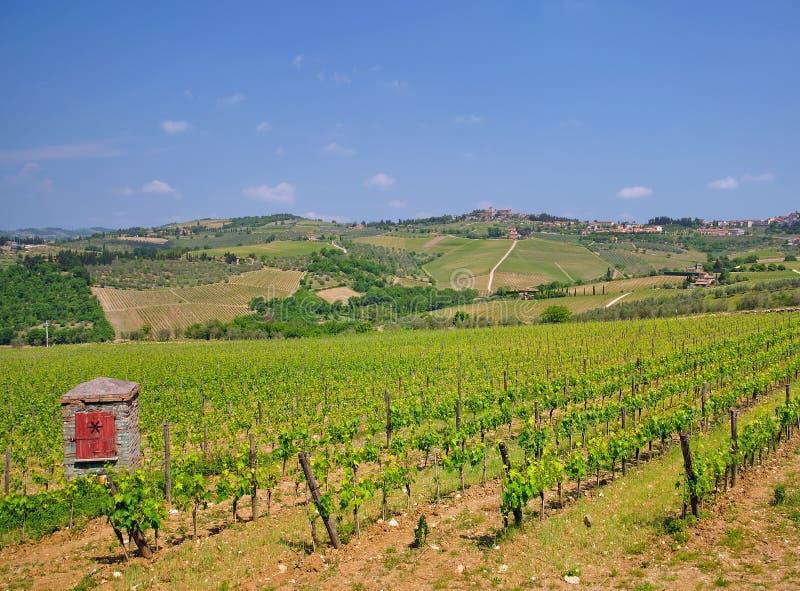 Strada del vino di Chianti, Toscana, Italia fotografie stock