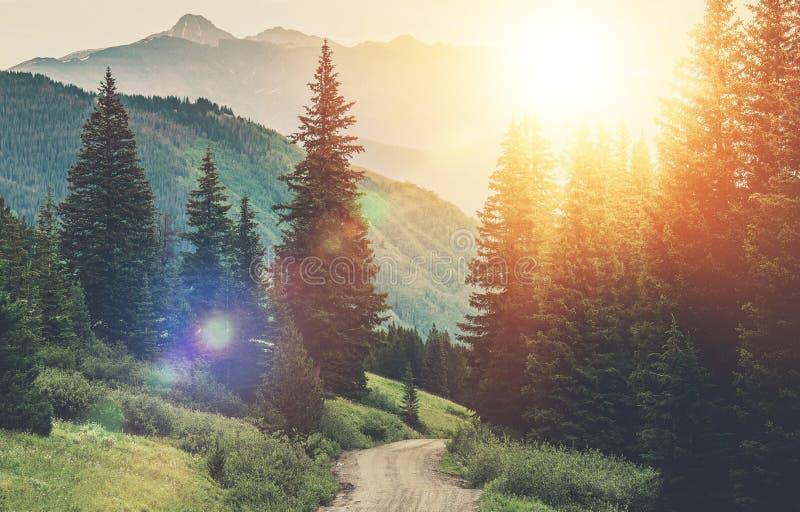 Strada della campagna della montagna immagine stock