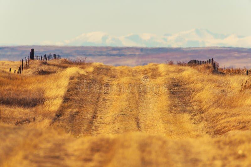 Strada della campagna di Colorado immagini stock