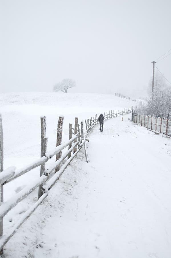 Strada della campagna di Snowy fotografia stock libera da diritti