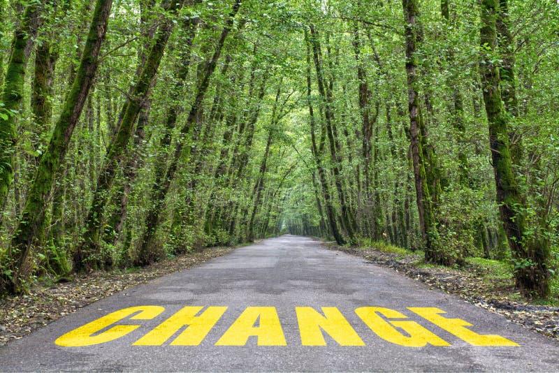 Strada della giungla da cambiare fotografia stock