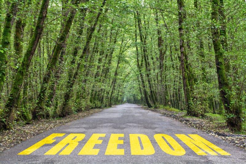 strada della giungla a libertà fotografia stock