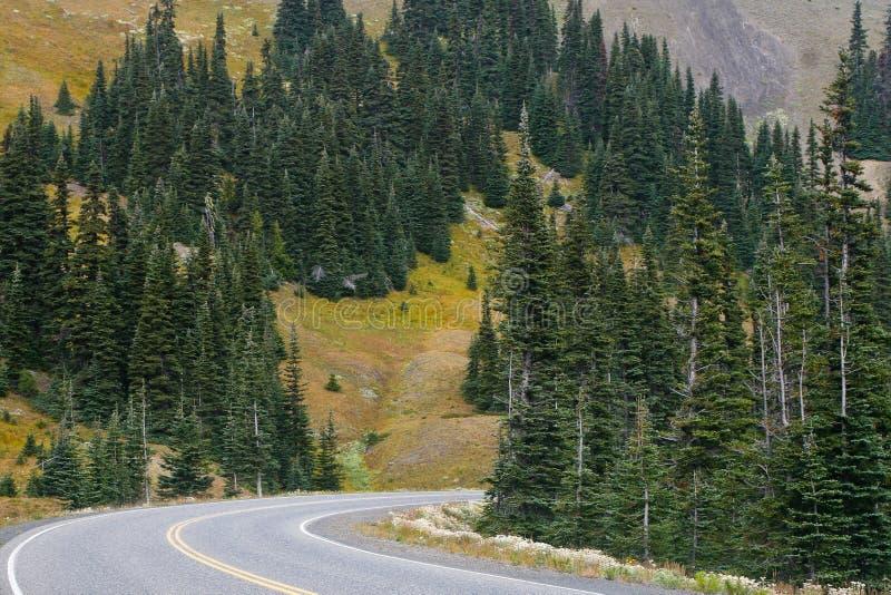 Strada della montagna immagine stock libera da diritti