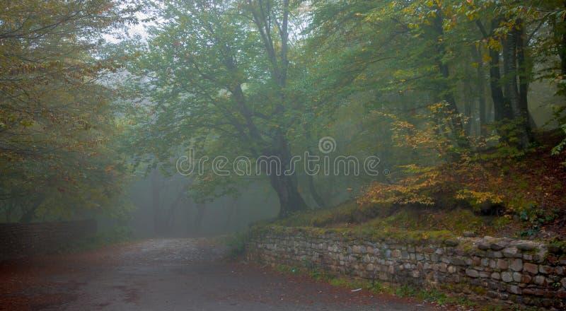 Strada della montagna ad un monastero abbandonato immagine stock libera da diritti