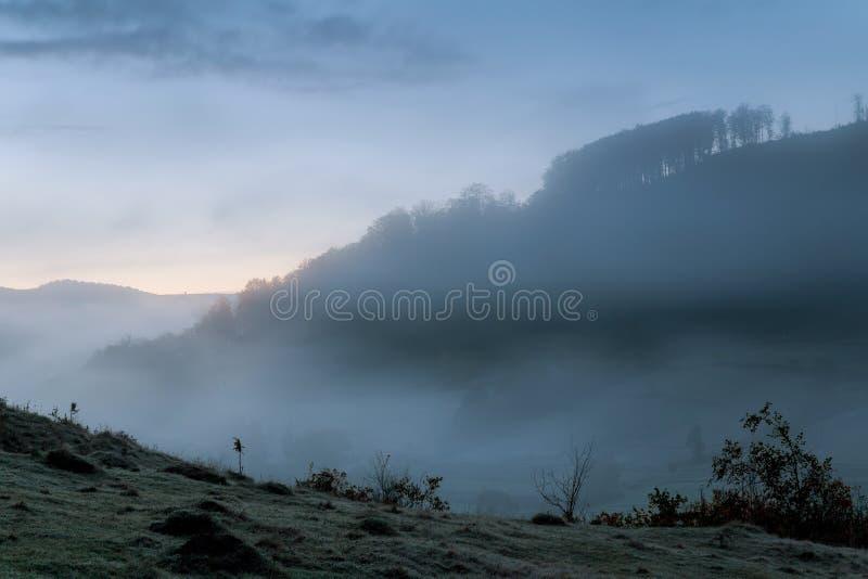 Strada della montagna attraverso la foresta su una notte della luna piena Paesaggio scenico di notte del cielo blu scuro immagine stock