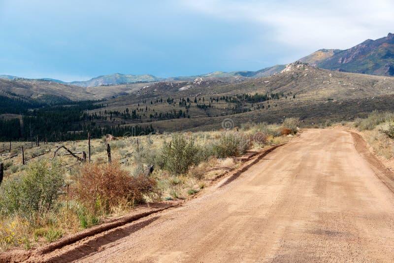 Strada della montagna con area precedentemente bruciata immagine stock